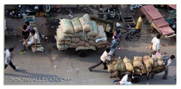 Sacos y Sacos de especias indias