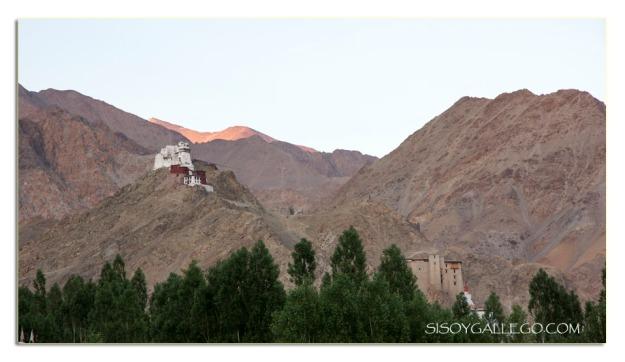 Monasterio Namgyal Semo en el pico de la montaña.