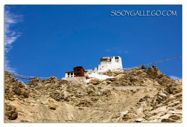 Larga ascensión al Monasterio Namgyal Semo.