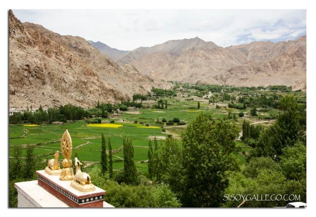Valle regado por el rio Indo visto desde el Monasterio de Phayang