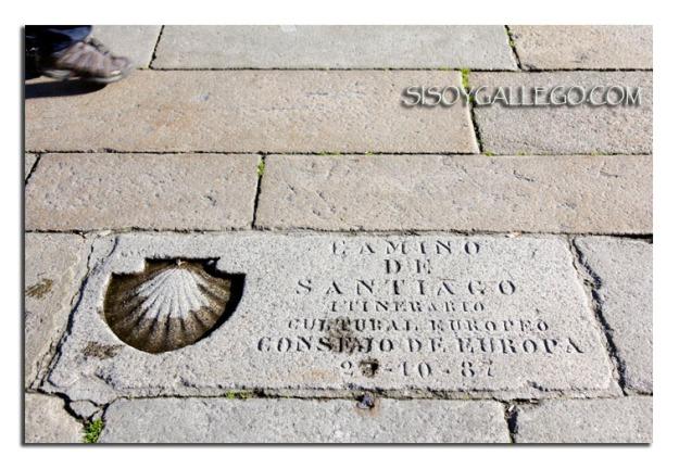 La célebre concha de vieira del camino de Santiago