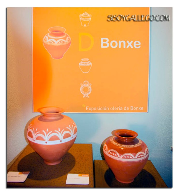 Museo Bonxe.Outeiro de Rei.Lugo