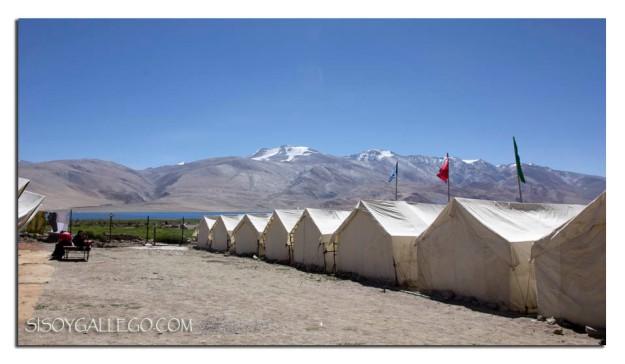 949_Tsomoriri.Campamento