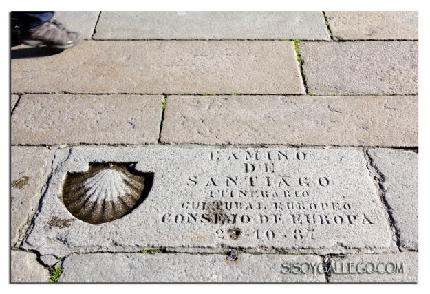 IMG_5166.Concha.Camino.Santiago