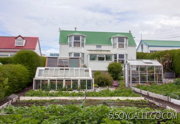 IMG_6644.Malvinas.Falkland