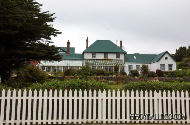 IMG_6680.Falkland.Malvinas.