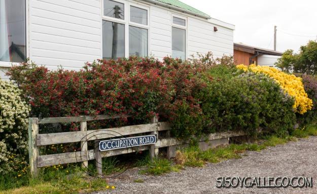 IMG_6743.Falkland.Malvinas.