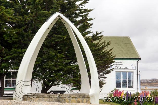 IMG_6798.Mandibulas.Ballenas.Falkland.