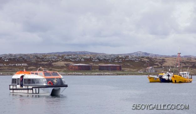 IMG_6833.Falkland.Malvinas.