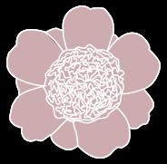 5.Anemona