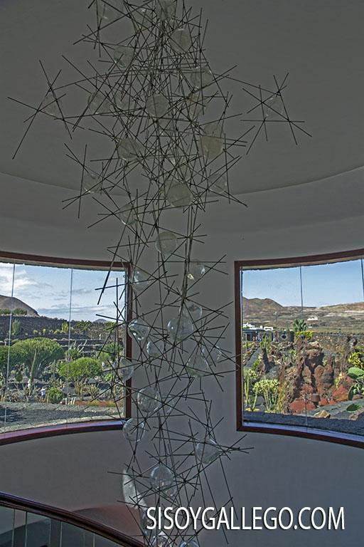 08.-Jardin Cactus